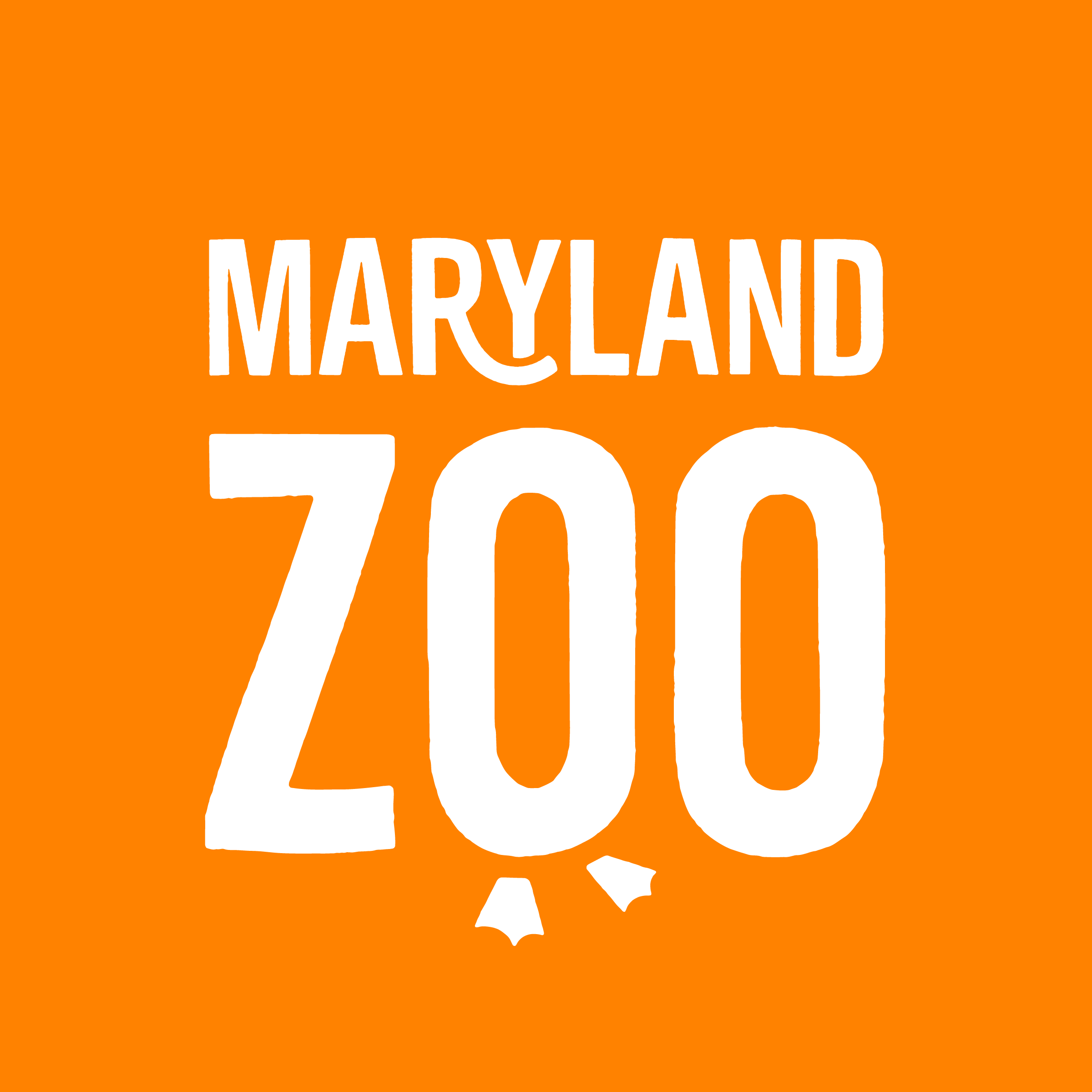 MDZoo_TertiaryLogo_Boxed_WhiteOnOrange-09.png